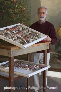 Bob Peck with Brooke Dolan's specimens in a rare mix of daylight and exhibition lighting